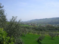 country house massignano